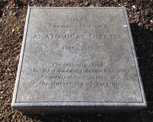 Anatomical Theatre Stone Marker, 2016
