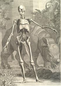 The academic essay a brief anatomy