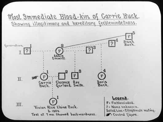 Carrie Buck's pedigree. Courtesy of Special Collections, Pickler Memorial Library, Truman State University.