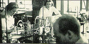 Medical students working in the labs