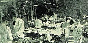 Anatomy lab students at work