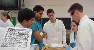 Students in the first-year anatomy class
