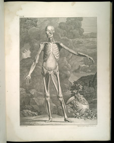 Albinus, Tables of the Skeleton and Muscles…, tab 3