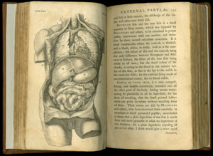 Cheselden, The Anatomy of the Human Body, tab XXI-135