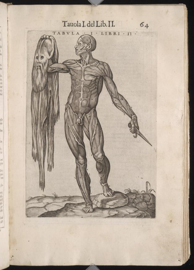 Juan de Valverde (ca. 1525-ca. 1587) | Vaulted Treasures: Historical ...