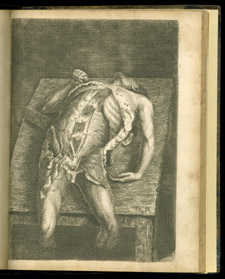 Bell, Engravings of the Bones, Muscles, and Joints…, plate IX
