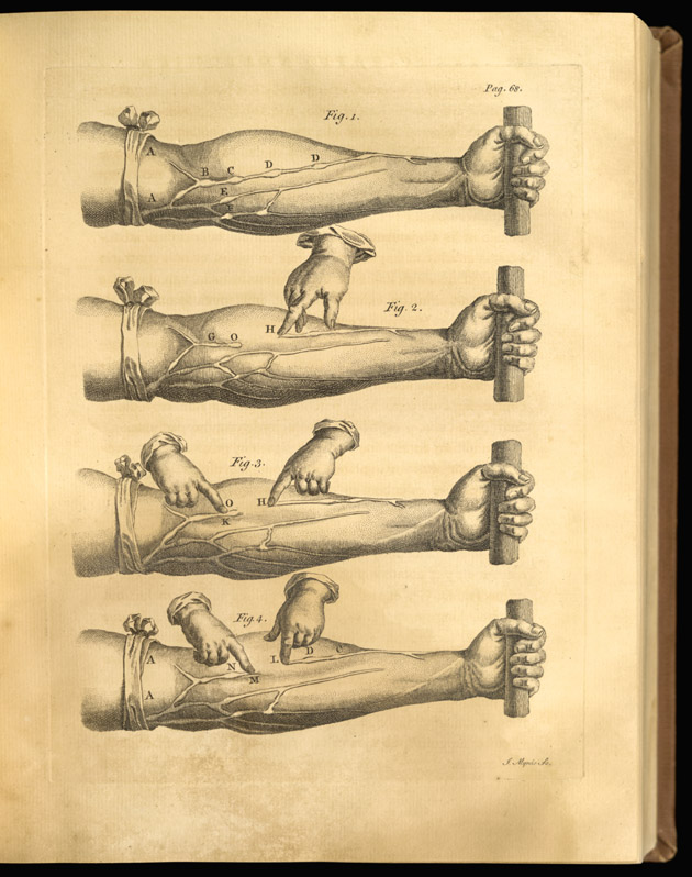 William Harvey (1578-1657) | Vaulted Treasures: Historical Medical ...